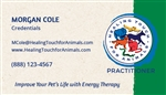 Practitioner Business Cards