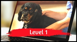 Level 1 Online Course