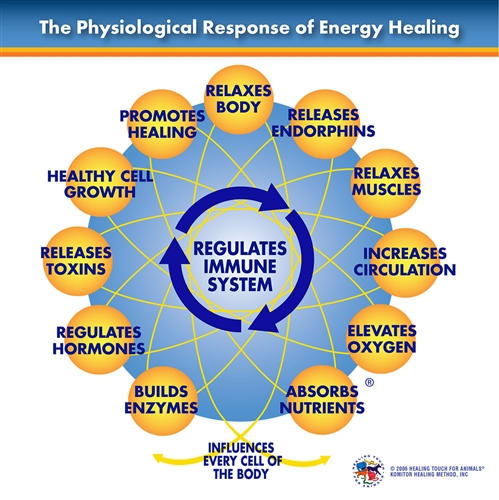 Healing Touch: The Healing Touch For Animals Physiological Response Chart
